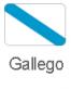 banderas+gallegotysidiomas